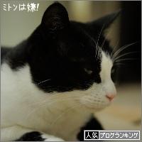 dai20160307_banner.jpg