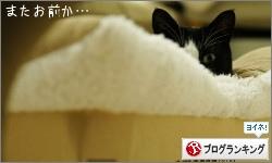 dai20160309_banner.jpg