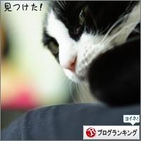 dai20160310_banner.jpg