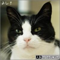 dai20160311_banner.jpg