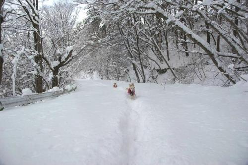 暖冬からの大寒11