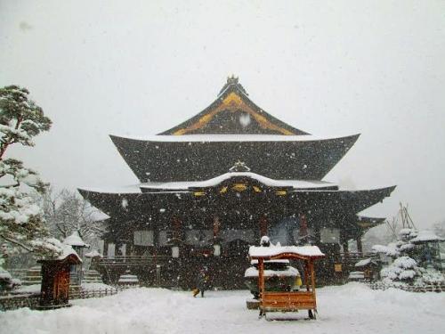 暖冬からの大寒2