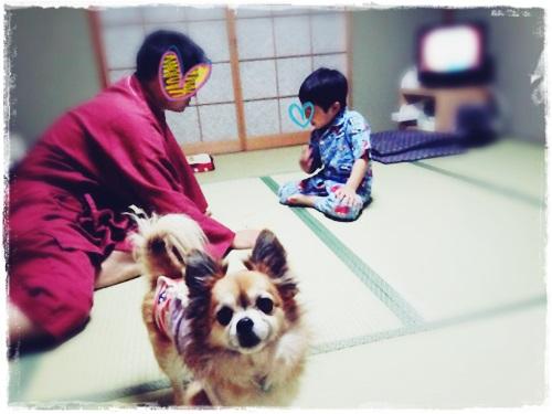 140523oyado yoru1