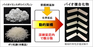NEDO_Hitz_totyu-compound_image1.jpg