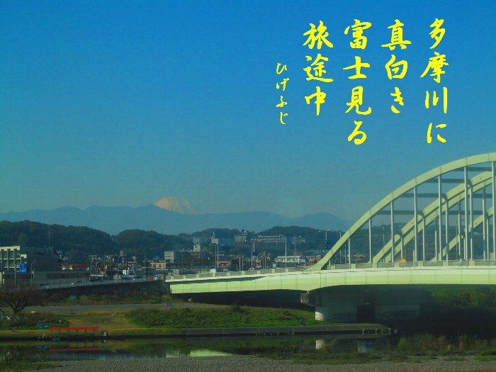 uenohiku03