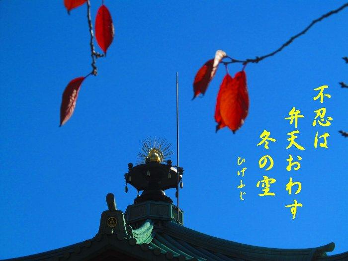 uenohiku06