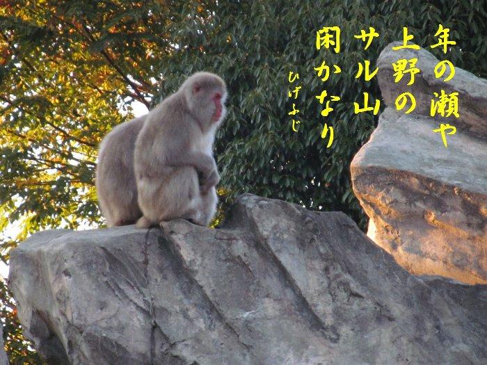 uenohiku07