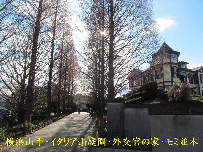 20151222ykyamate08.jpg