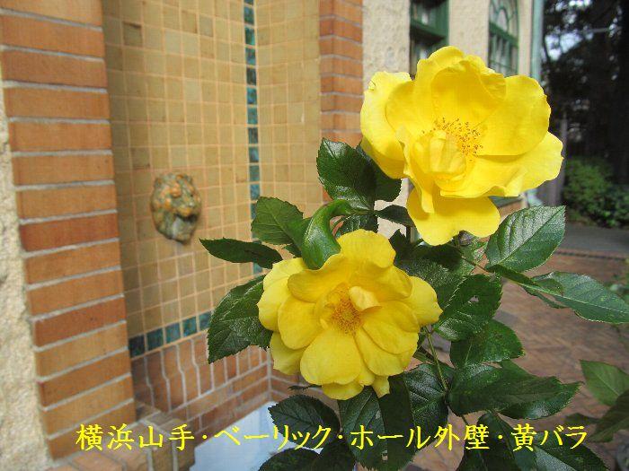 20151222ykyamate11.jpg