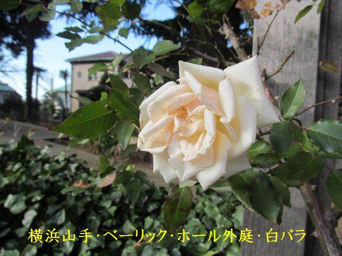 20151222ykyamate12.jpg