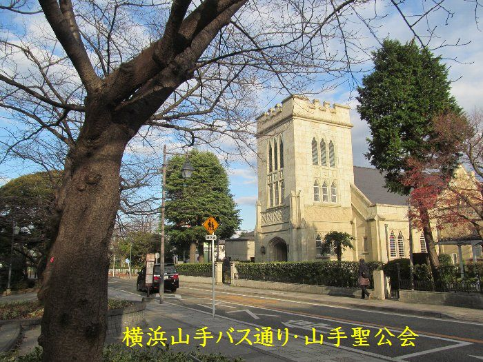20151222ykyamate18.jpg