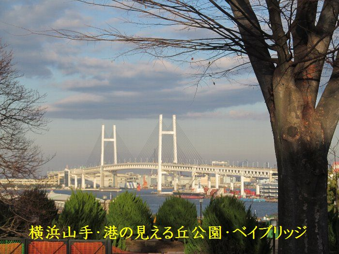 20151222ykyamate26a.jpg