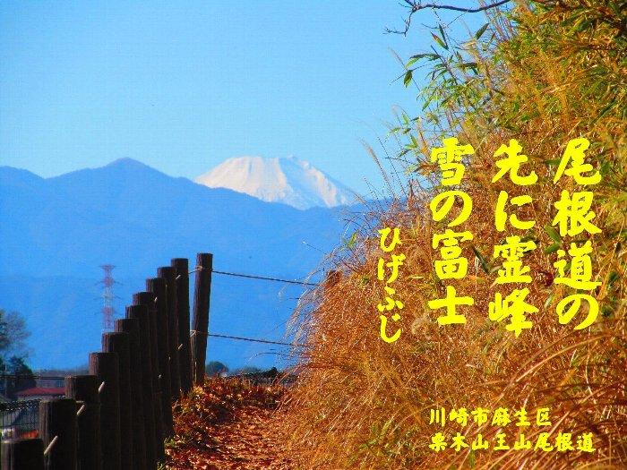 20160101fuji02.jpg