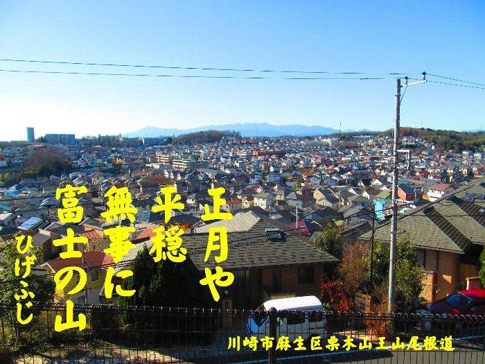 20160101fuji03.jpg