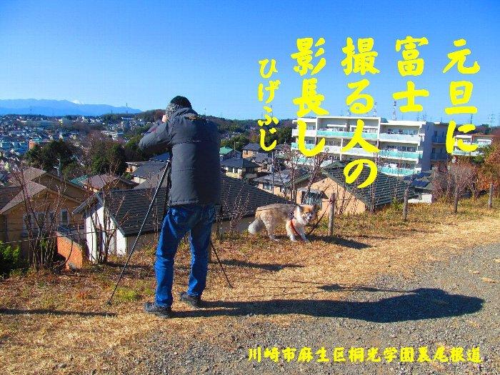 20160101fuji04.jpg