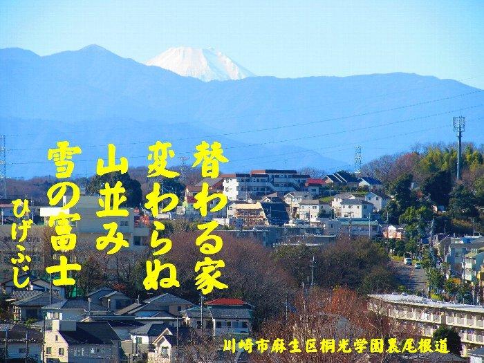 20160101fuji06.jpg