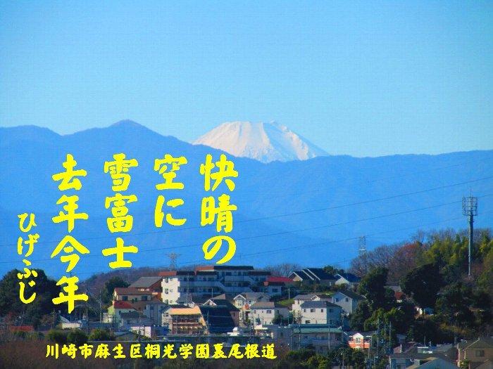 20160101fuji07.jpg