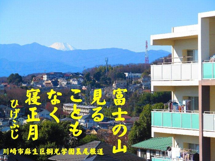 20160101fuji08.jpg
