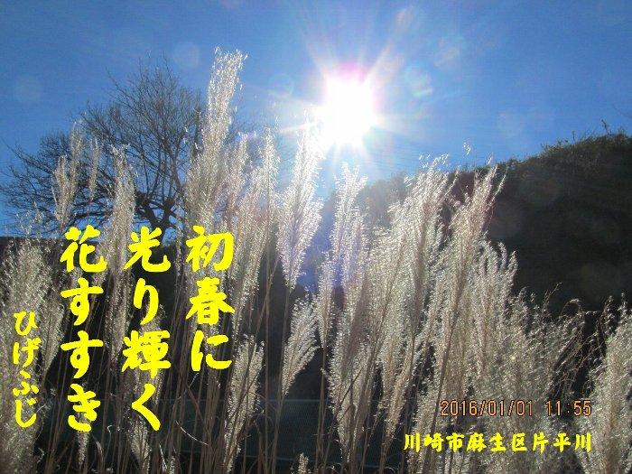 20160101fuji09.jpg