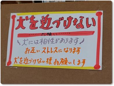 kowasi2.jpg