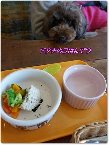 kowasi6.jpg