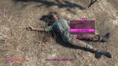 Fallout 4nyusyokusyajinzoubuhin