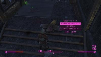 Fallout 4dcrlcn01