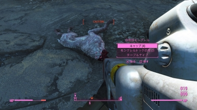 Fallout 4_20160210021611