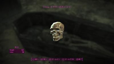 Fallout 4sd0039
