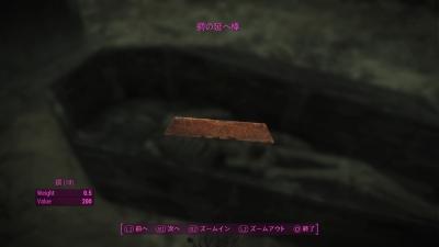 Fallout 4sd0045