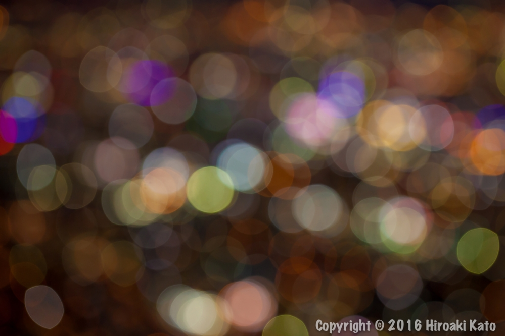 IMG_9796-2.jpg