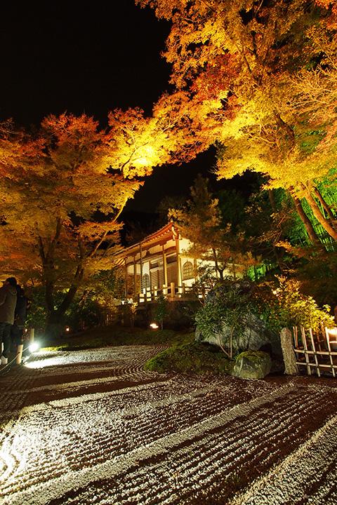 20151129_hogonin_temple-08.jpg