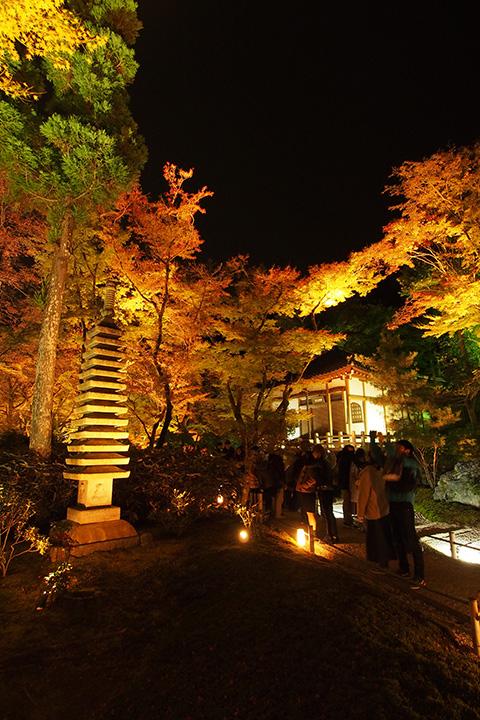 20151129_hogonin_temple-09.jpg
