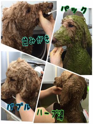 リン風呂_convert_20160110200536