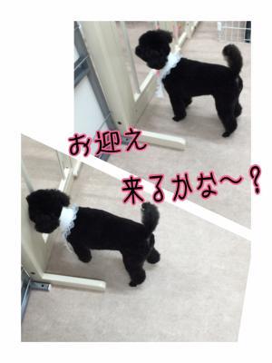 にこ_convert_20160308191936