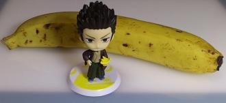 バナナ 近藤勲