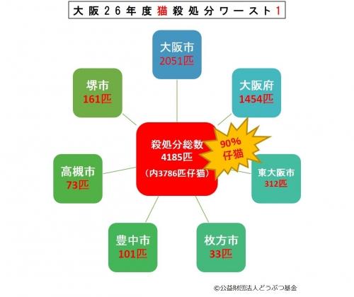 大阪猫殺処分図