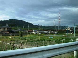 igaaoyama2.jpg
