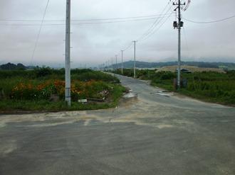 yamamoto106.jpg