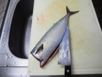 鯖のガーリックソテー06