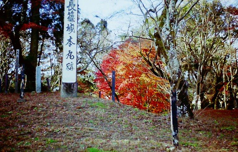 長篠城跡の紅葉-2 '2015