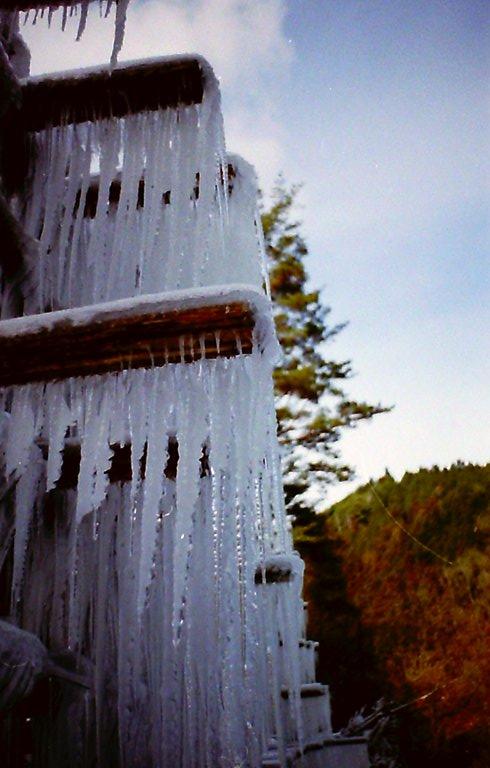設楽の氷柱-6 '2016