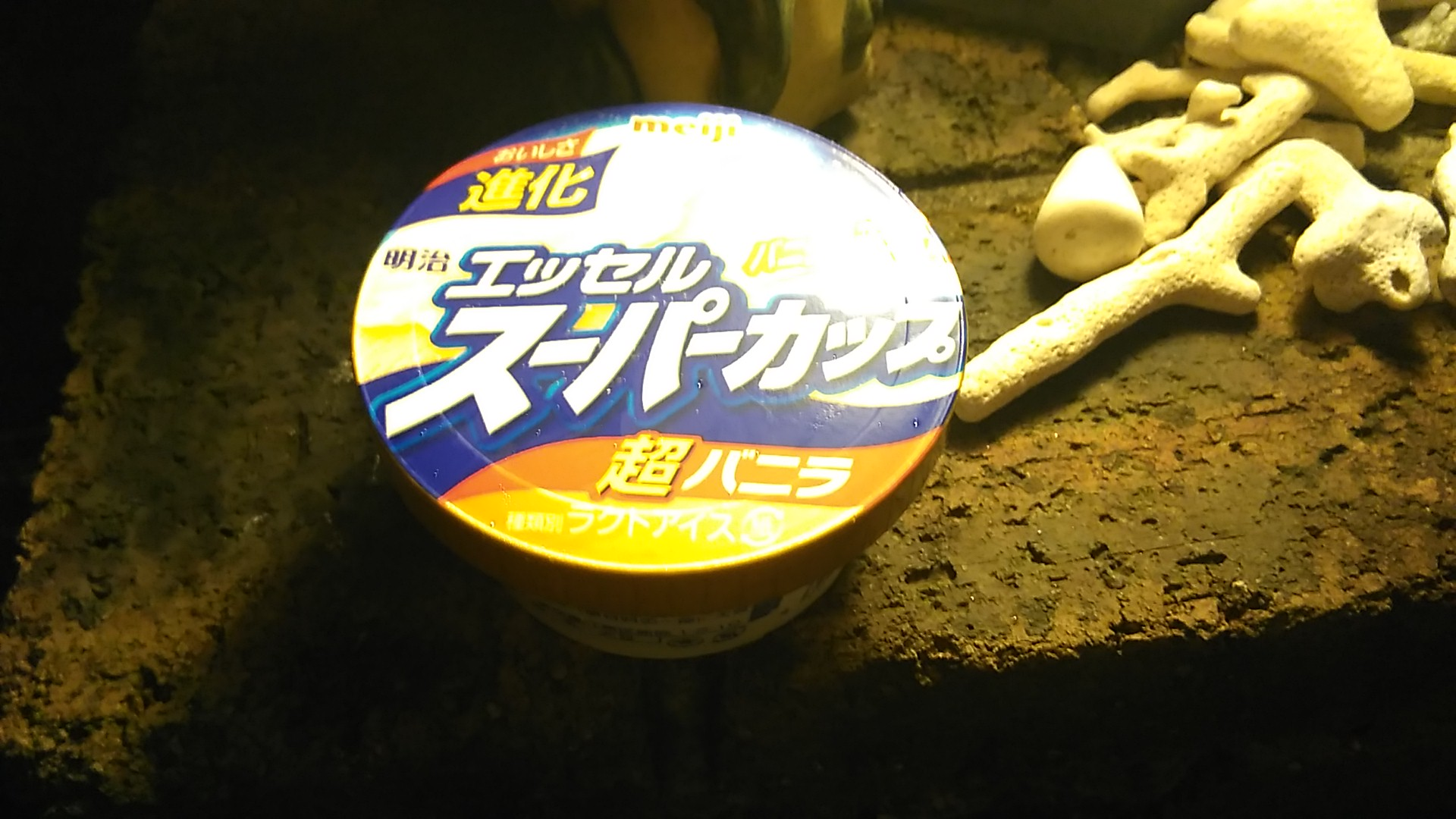 WP_20160201_22_35_11_Pro_アイスを食べる日