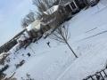 Snow_Feb2016.jpg