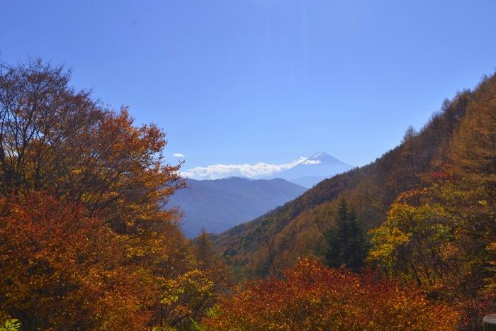 柳沢峠の秋19
