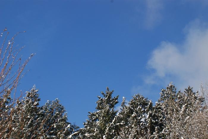 青い空と10-1