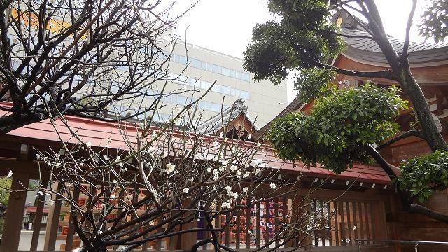 福岡市警固神社