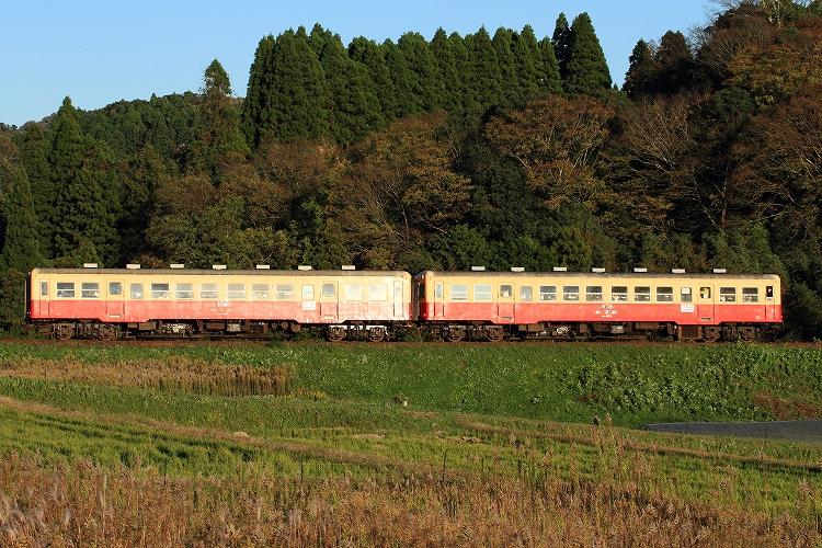 k-IMG_1560-1.jpg