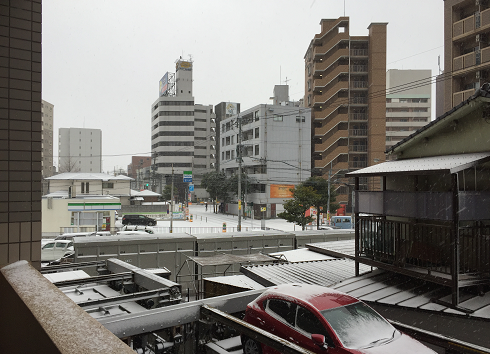 2016 1 雪