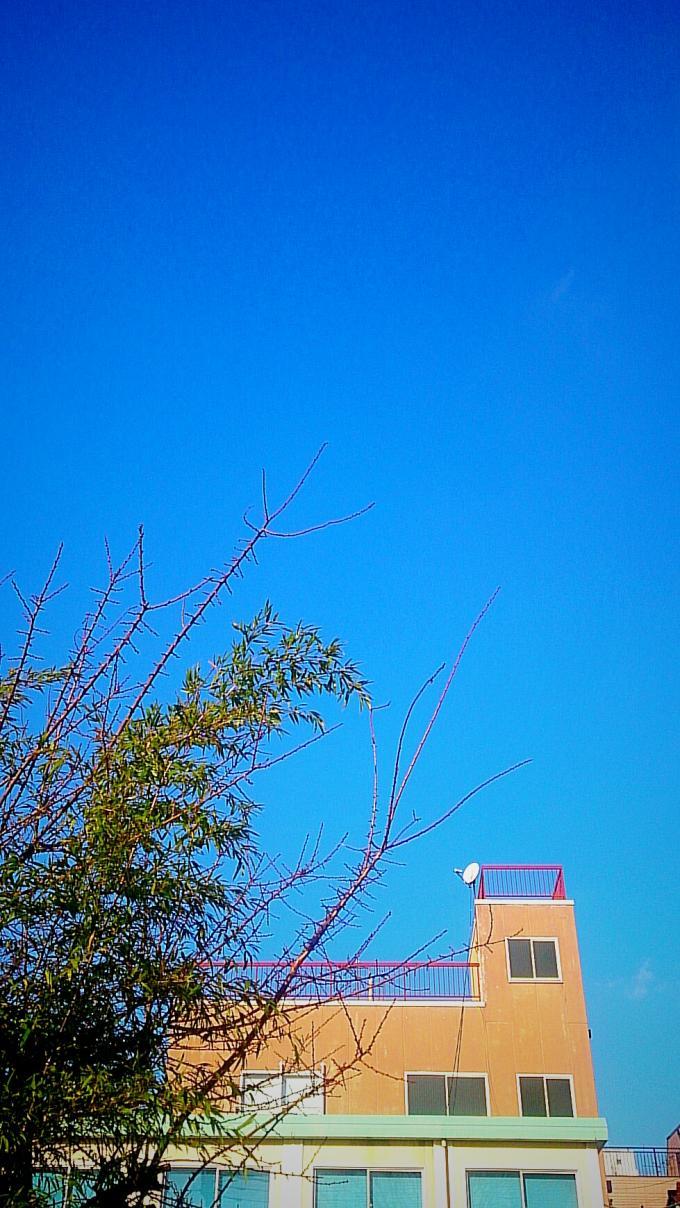 碧空_20160115